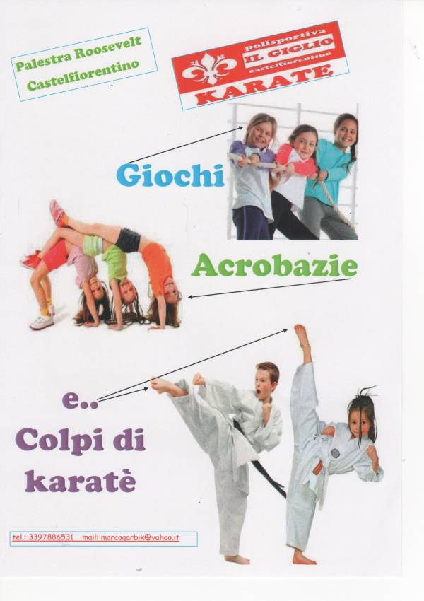 Giochi gratis di karate